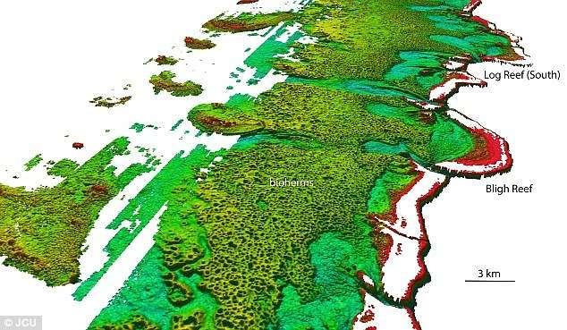Données Lidar de la Royal Australian Navy qui ont permis à une équipe de chercheurs australiens de mettre en évidence ce grand récif corallien composé d'une multitude de biohermes. © Australia Hydrographic Service, JCU