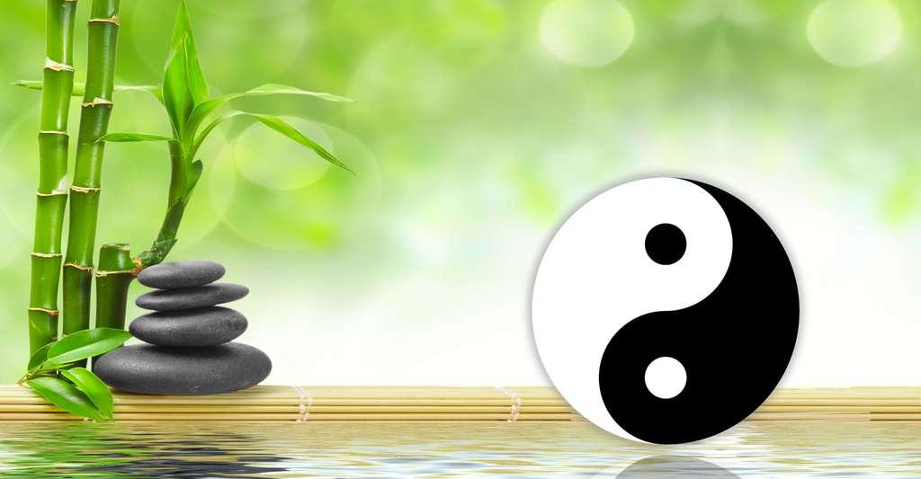 Quel lien y a-t-il entre nos états psychiques et physiques ? Une pensée négative génère une émotion négative. A contrario, une pensée positive génère une émotion positive. © Scorpp, Shutterstock