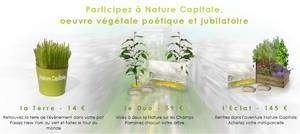 Un pot de jeunes plants, un tirage d'une gravure, des clés des champs pour des accès privilégiés à l'événement parisien, un parterre entier : cliquez pour participer Nature Capitale et n'oubliez pas d'indiquer notre code : futuraenvironnement. (Cliquer sur l'image pour accéder au site.)
