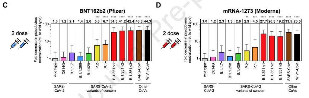 Les variations de la neutralisation des pseudo-particules virales portant les protéines S de chaque variant du SARS-CoV-2 après deux doses du vaccin de Pfizer et de Moderna. Les variants P.1, P.2 et B.1.351 sont les plus résistants. © Wilfredo F. Garcia-Beltran et al., Cell
