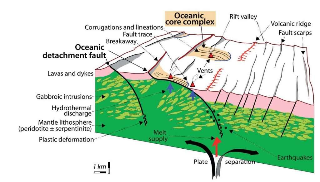 Schéma montrant la formation des core complexes océaniques, au niveau d'une dorsale lente, par le biais d'une faille de détachement. © Marco Maffione, article paru dans la revue Scientific Reports, Licence CC-by-NC-ND 3.0