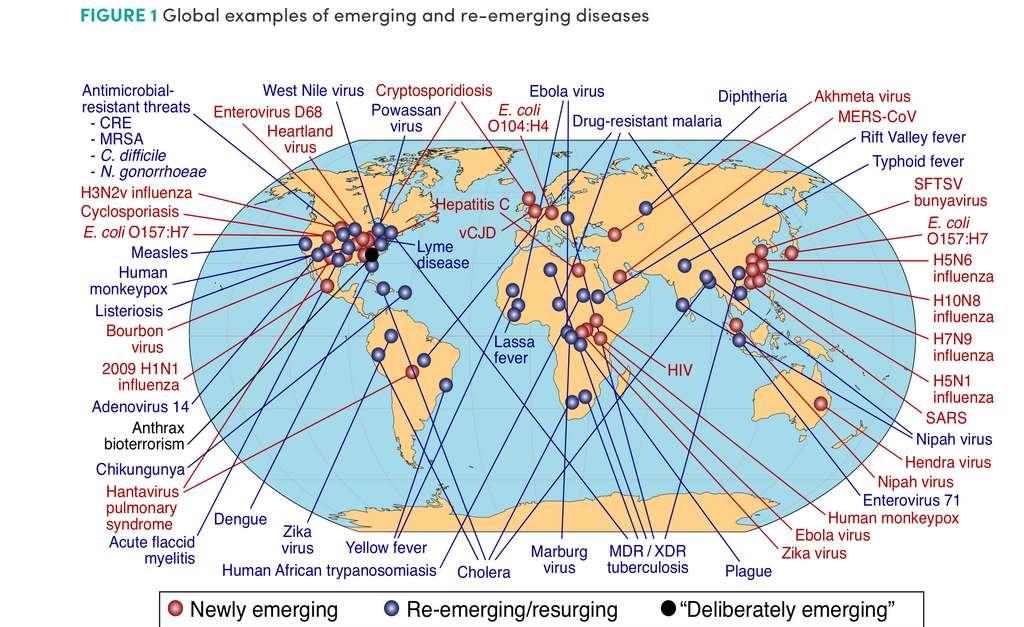 Carte des pathogènes découverts ou ayant émergé à nouveau au cours de 50 dernières années. © United States National Institutes of Health, National Institute for Allergies and Infectious Diseases