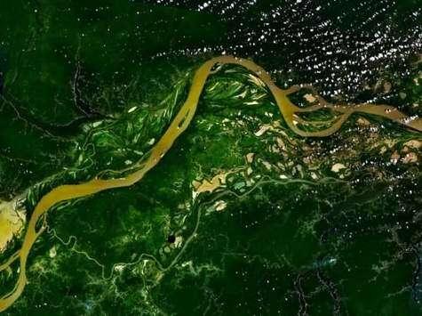 L'Amazonie est toujours verte… mais avec des nuances. Elle verdit quand il pleut moins. Crédit : Nasa