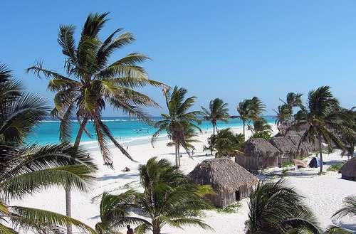 Palmier, sable blanc et eau turquoise… Un vrai paysage de carte postale sur les côtes du Yucatán ! © Hawkfish