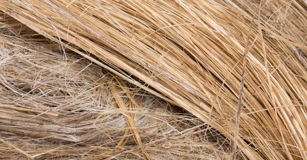 Le traitement en fin de vie des matériaux composites à renforts en fibres naturelles n'est pas maîtrisé. Leur recyclage mécanique pose des problèmes techniques, car les renforts végétaux supportent mal les hautes températures et les cisaillements subis au cours du processus. © Anatol, Fotolia