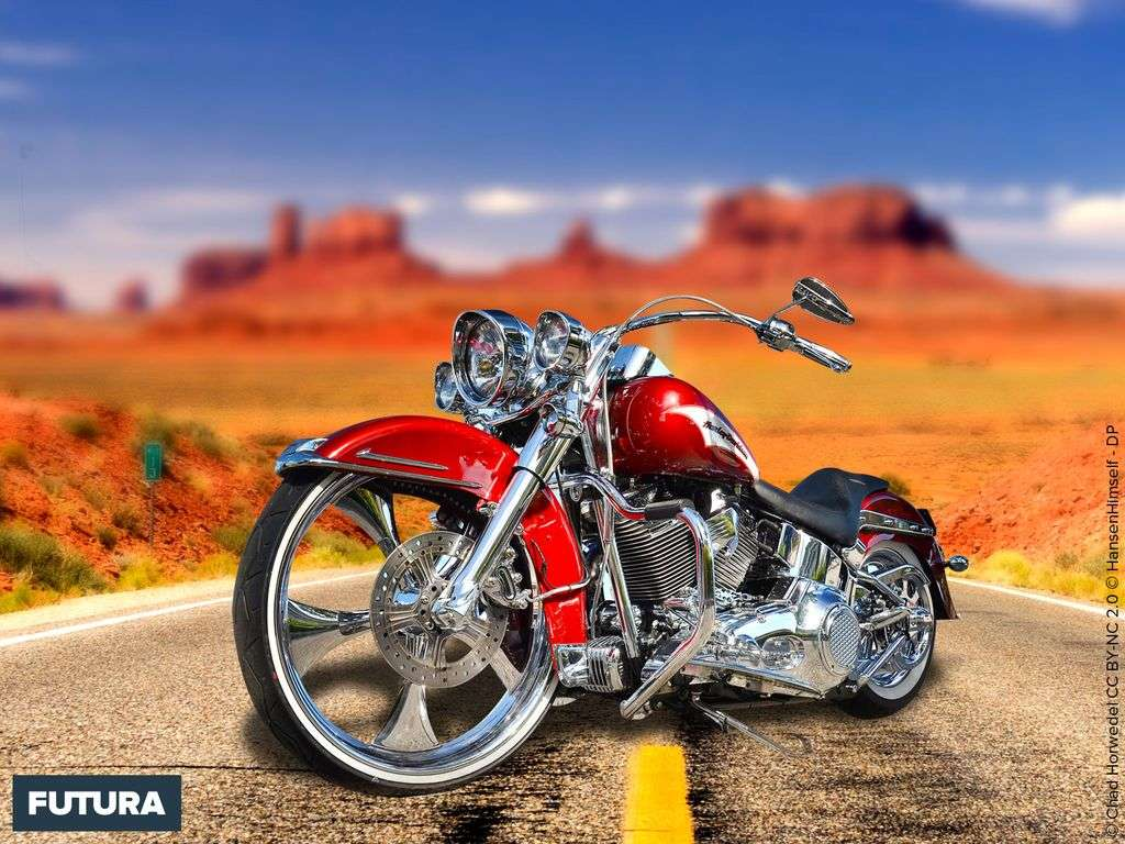 Passion moto Harley Davidson