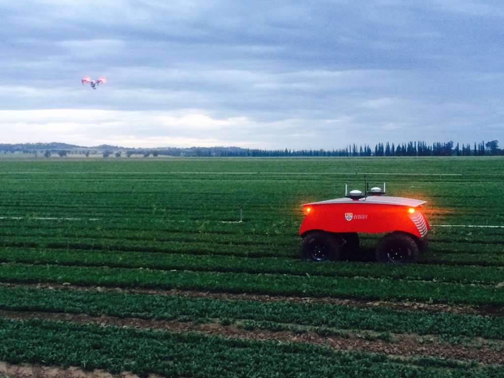 Le robot agricole Rippa, exemple de la modernisation du monde de l'agriculture. © Université de Sydney