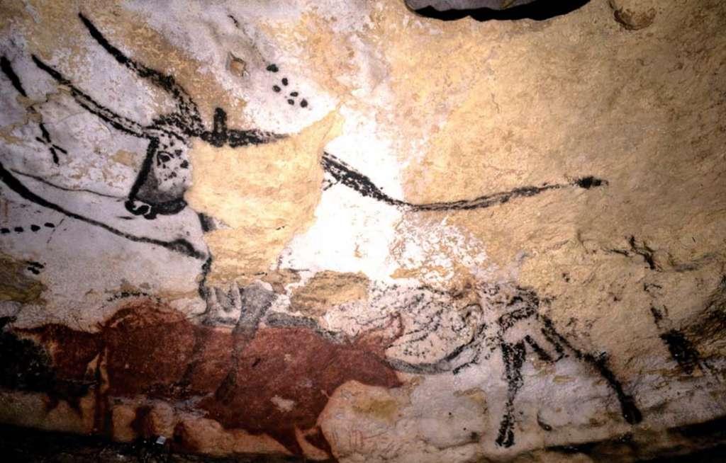 Pourquoi les peintures et gravures de la grotte de Lascaux nous touchent-elles autant ? Ici, le quatrième taureau visible dans la fameuse « salle des taureaux », sur le panneau de l'ours, près de l'entrée. La peinture de cet auroch noir s'étend sur 5,6 mètres, depuis l'extrémité de ses cornes jusqu'à sa queue. Différentes techniques ont été employées pour exécuter cette œuvre, l'une des plus emblématiques du site. Un signe en forme d'étoile est représenté devant l'animal. Les points alignés devant et aussi au-dessus de son épaule intriguent également et sont sujets à de multiples interprétations. Quel est le sens de ces peintures ? Y a-t-il des allusions à des groupes d'étoiles telles les Pléiades, que l'on peut observer justement dans la constellation du Taureau ? © MCC