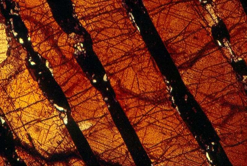 La démixtion d'un pyroxène de haute température (1.400°C) provenant du massif de Freychinède en Ariège, se traduit par l'alternance de bandes noires (grenat) et oranges (clinopyroxène). Image en lumière polarisée analysée d'une lame d'un cm de longueur. © Jacques Kornprobst