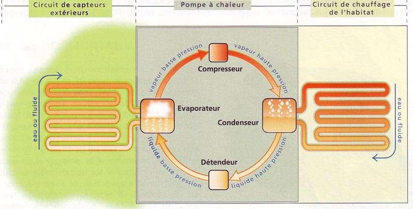 Principe d'une pompe à chaleur géothermique. © www.dominguez-energie.com