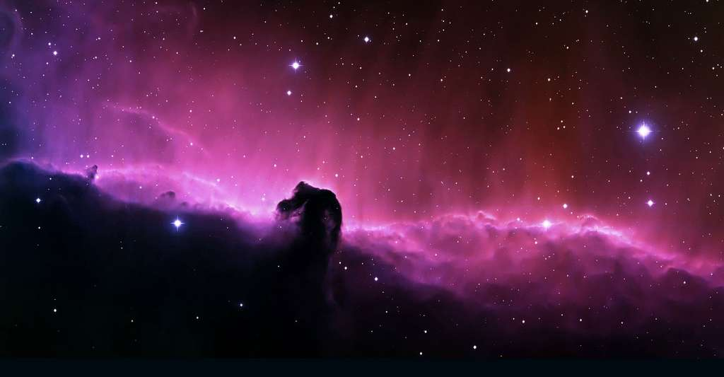 Nébuleuse Tête de cheval. © WikiImages, Pixabay, DP