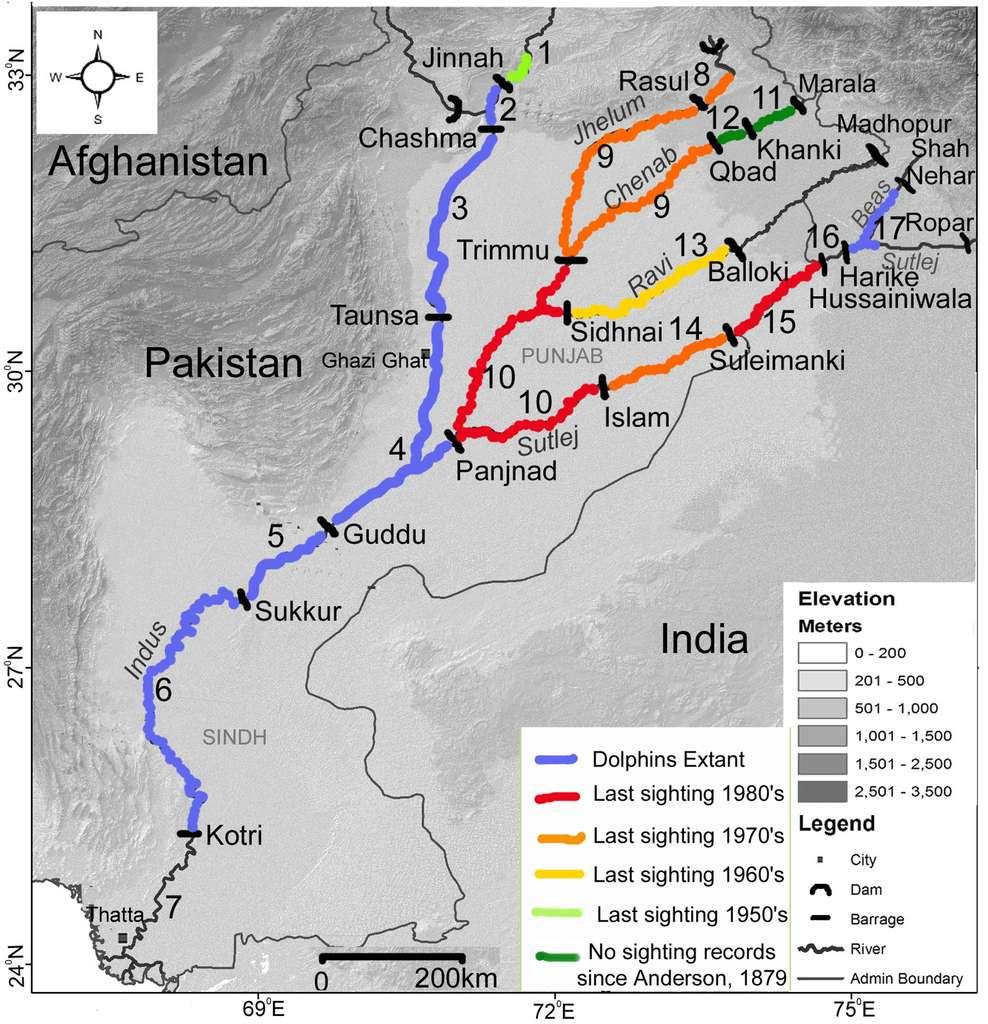 La vallée de l'Indus, au Pakistan, avec tous ses barrages (en noir) à peu près infranchissables par les dauphins, qui ont créé 17 segments. Les couleurs indiquent les observations relatives à Platanista gangenica minor. En bleu : présence ; en rouge, orange, jaune et vert clair : pas d'observation depuis, respectivement, les années 1980, 1970, 1960 et 1950. En vert foncé : pas d'observation depuis celles d'Anderson en 1879. © Gill T. Braulik et al., Plos One
