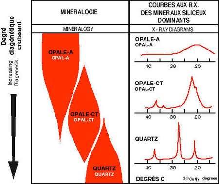 Relations entre diagenèse, minéralogie et lithologie des roches siliceuses de la Formation de Monterey (d'après Pisciotto et Garrison, 1981).