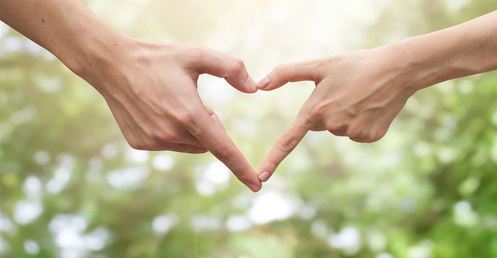 Bien-être subjectif et bien-être psychologique : deux conceptions du bonheur. © Chainarong06, Shutterstock