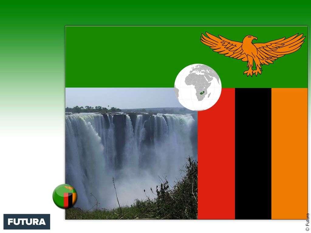 Drapeau : Zambie