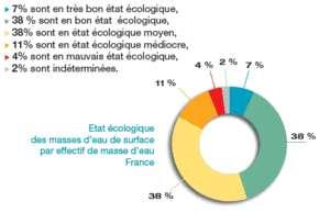 Cliquer pour agrandir. Répartition des masses d'eau de surface en fonction de leur état en 2009. Seules 45% d'entre elles atteignent au moins le bon état écologique. © Onema