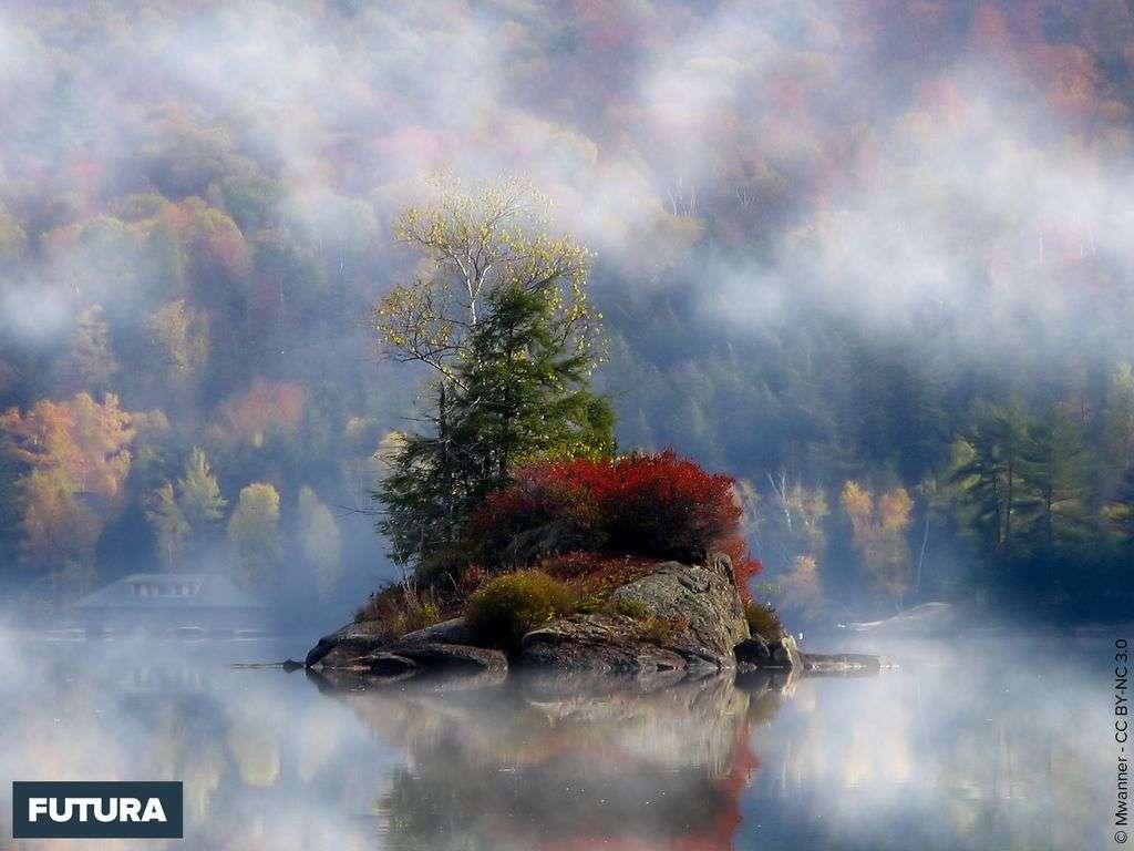 Ile sur le Lower Saranac Lake - USA