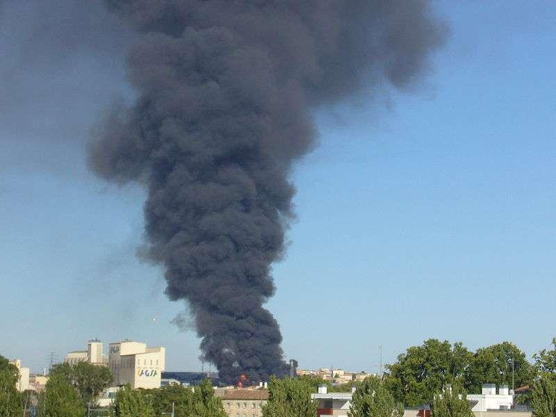 Un incendie peut provoquer une combustion incomplète et la production de dioxines, pouvant contaminer les animaux des environs. © Xavilleida, Wikimédia, CC by-sa 2.5