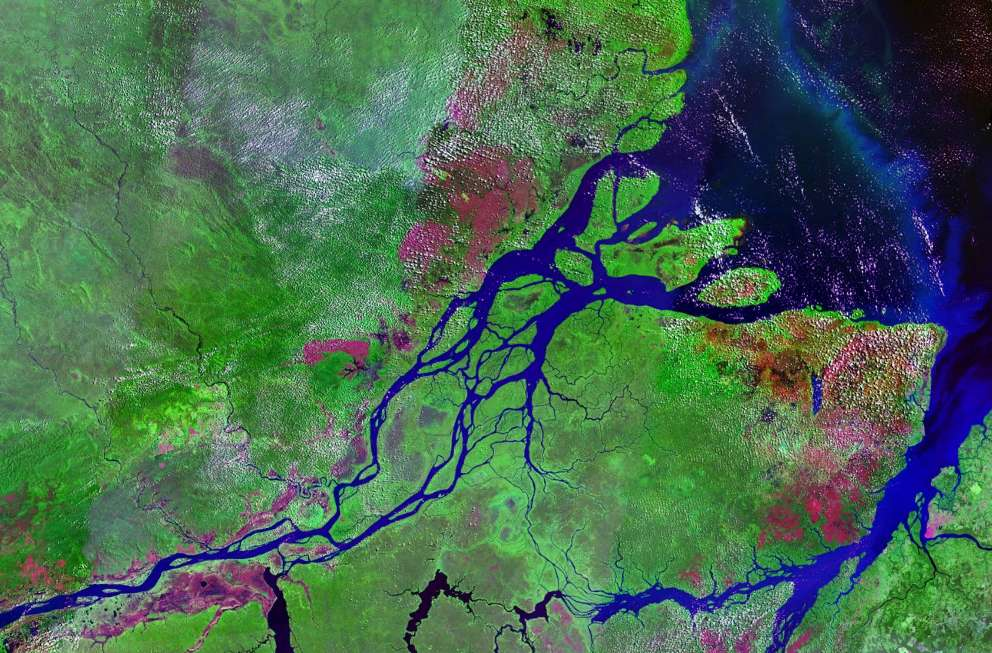 La géométrie fractale et les fleuves : l'Amazone