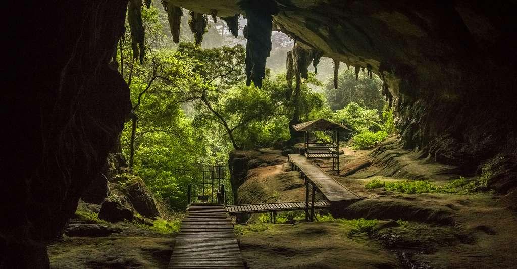 Lors de la fouille des sites de Bornéo, des céramiques et du matériel lithique ont été retrouvés. © Lillian, Fotolia
