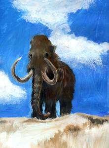 Le mammouth laineux, apparemment si bien adapté à son milieu, a pourtant disparu. Pourquoi ? © Birgit Hannwacker