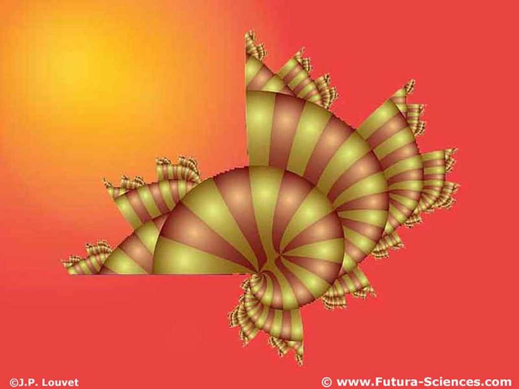 Escargot fractale