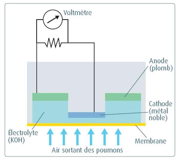 Cellule galvanique pour la mesure de la concentration d'oxygène. © Belin