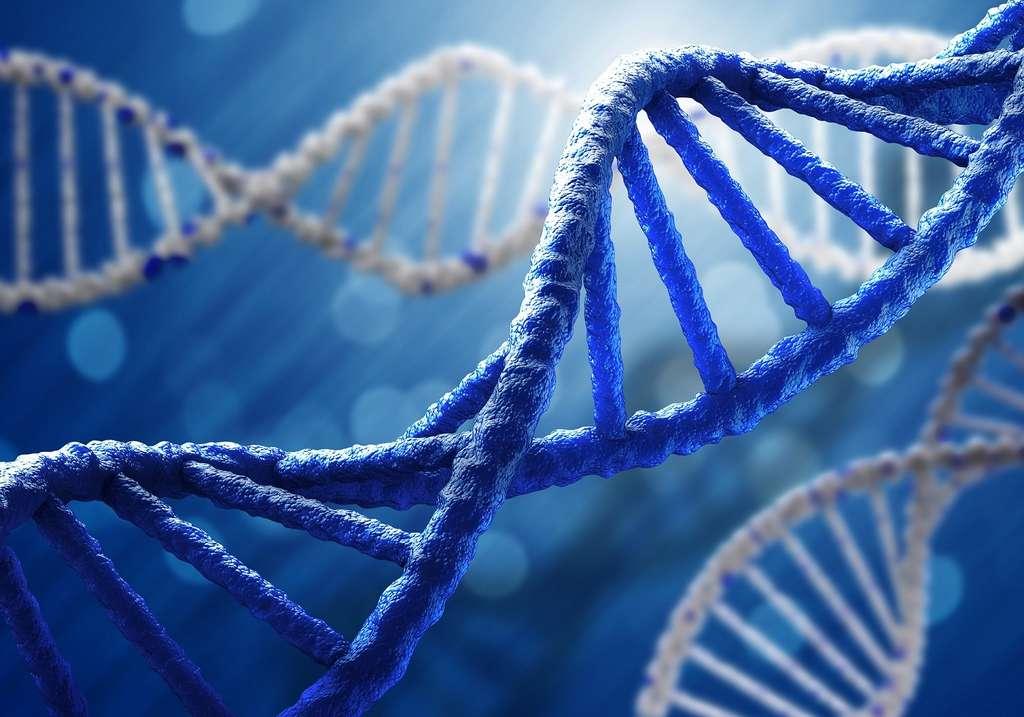 L'environnement peut modifier l'ADN par épigénétique. © Sergey Nivens, Shutterstock