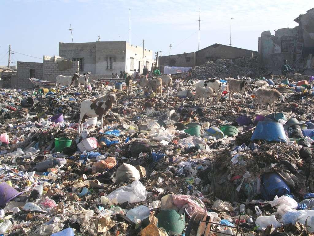 La décharge — ou centre de stockage des déchets — représente le plus ancien moyen de se débarrasser des déchets. Dans certains pays (ici à Dakar, au Sénégal), elle est utilisée quasi exclusivement. © MyriamLouviot, Wikipedia, CC by 3.0