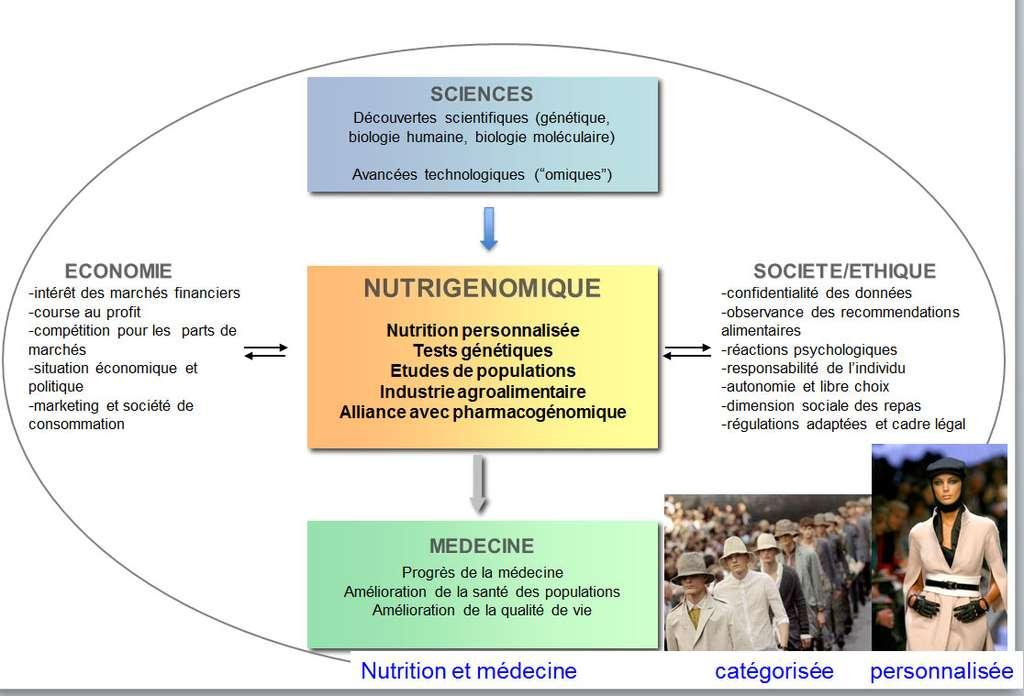 Le domaine de la nutrigénomique peut occuper une place centrale, au cœur des avancées scientifiques et des problématiques sociétales. © DR