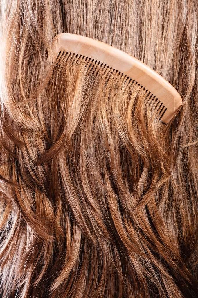 Nous perdons entre 45 et 60 cheveux par jour et en produisons en moyenne 70 g par an. © Voyagerix, fotolia