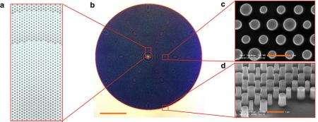 Les microlentilles planes inventées par les chercheurs sont constituées de picots de silicium. Sont représentés sur le schéma : l'image utilisée pour réaliser une microlentille plane (a), l'image en microscopie optique d'une microlentille plane (b) et les images en microscopie électronique à balayage des picots de silicium offrant à la lentille de hautes performances (c, d). Barres d'échelle : 1 picomètre. © Nature Communications