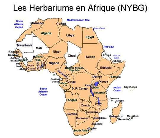 Carte des herbariums officiels d'Afrique d'après le New York Botanical Garden © Tous droits de reproduction réservés