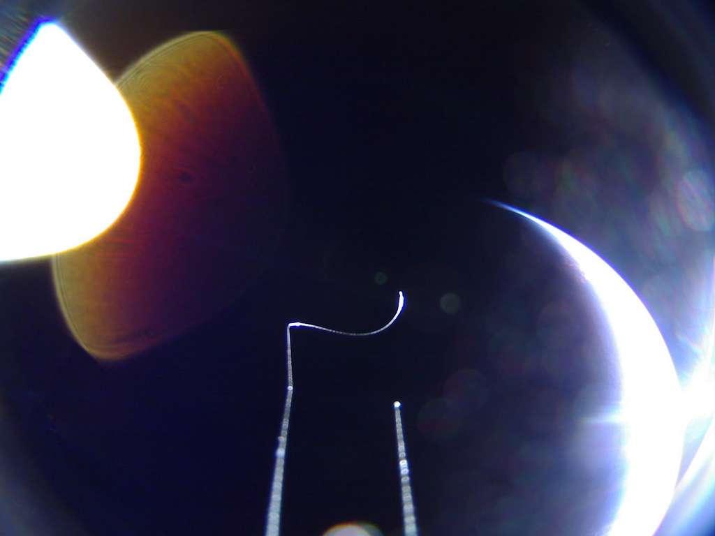 Image de la Terre peu avant que le Soleil ne se couche à l'horizon (hors de l'image en bas à droite), prise par la voile solaire LightSail-2 le 6 juillet 2019. Sur cette image non retouchée, les artefacts proviennent de la diffusion de la lumière à l'intérieur de l'objectif de la caméra. Il s'agit par ailleurs d'un objectif fisheye avec un vaste champ de vision (180°), mais responsable des arcs brillants aux coins de l'image et source de distorsion. Selon The Planetary Society, les objets visibles au premier feraient partie du spectraline, dispositif qui maintenait les panneaux solaires fermés avant déploiement. © The Planetary Society