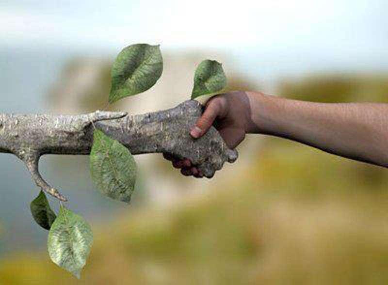 Main dans la main avec la nature