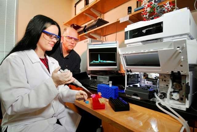 Nicholas Hud et son étudiante en thèse Ragan Buckley au travail. Avec des collègues ils ont découvert que la formation des bases de l'ARN par des processus de chimie prébiotique pourrait avoir été plus facile qu'on ne le pensait. Crédit : Georgia Institute of Technology-Gary Meek