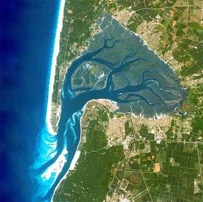 Vue du bassin d'Arcachon par satellite. © DR