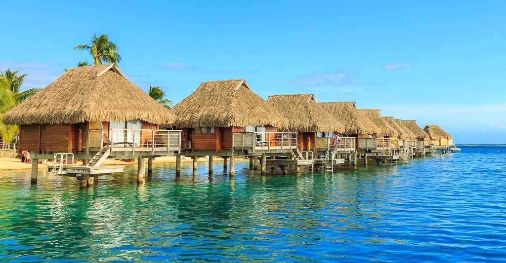 Les perles de Tahiti génèrent environ 5.000 emplois dans plus de 800 fermes productrices réparties dans 30 îles et atolls. © Sarayuth3390, Shutterstock