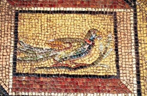 Détail d'une mosaïque représentant le triomphe de Dionysos. © Catherine Abadie Reynal (Mission Zeugma) - Toute reproduction interdite