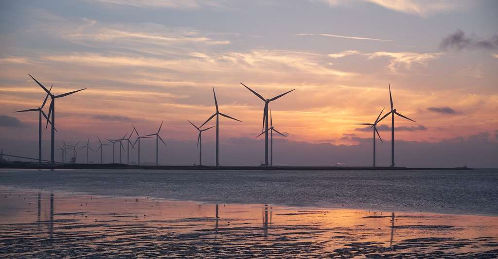Les pales de certaines éoliennes sont en PVC. © WerbeFabrik, Pixabay, DP