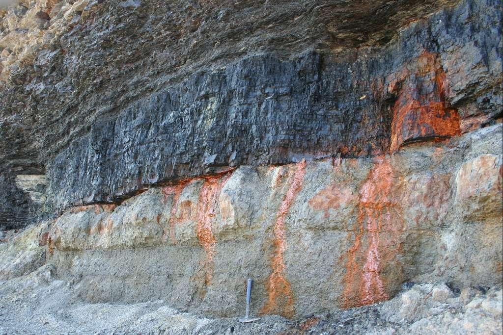 Affleurement d'un niveau de charbon bitumineux (littoral de Nouvelle-Écosse) © Rygel, M.C., Wikimedia Commons, CC by-sa 3.0