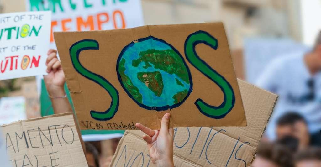 Durant la COP 25, 196 pays du monde discuteront de la crise environnementale. © bravajulia, Adobe Stock