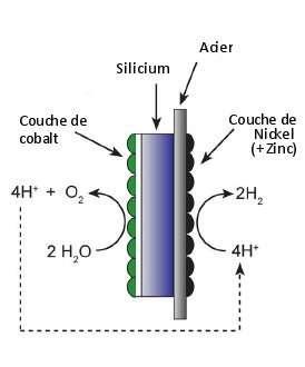 Fonctionnement de la feuille artificielle : les atomes des molécules d'eau sont séparés au niveau de la couche de cobalt, formant du dioxygène et des atomes d'hydrogène qui sont transformés en dihydrogène au niveau de la face de nickel. © Reece et al. 2011 - Science