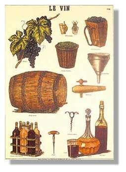 Illustration de la vigne... au verre de vin.