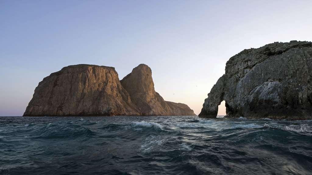 L'île de Malpelo, déclarée Patrimoine naturel de l'humanité par l'Unesco, accueille une biodiversité marine exceptionnelle. © Vigilife