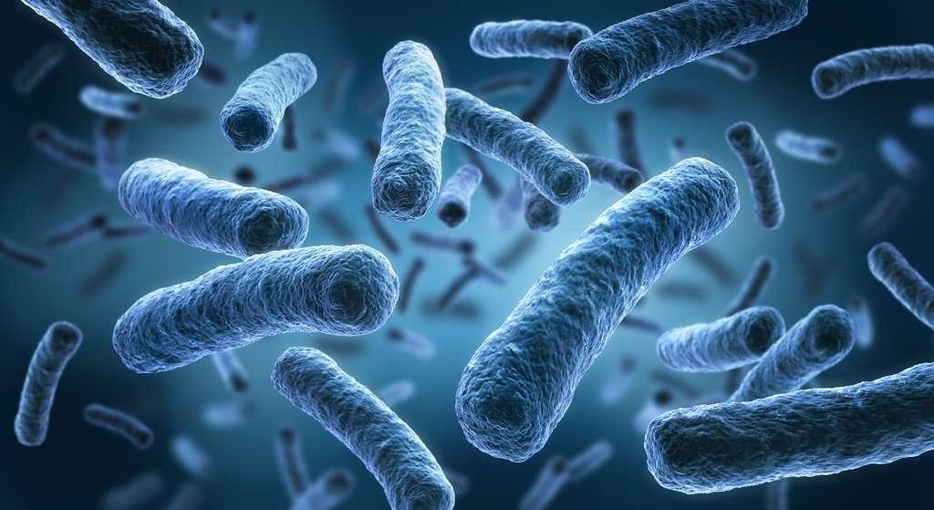 Les bactéries peuvent acquérir des résistances par mutation. Souvent, les gènes de résistance se trouvent sur des plasmides (des ADN circulaires) qui peuvent s'échanger entre bactéries. © psdesign1, Fotolia