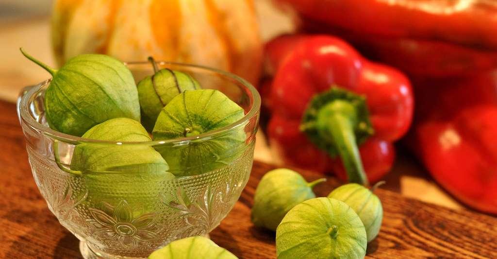 Les tomatillos (ou tomatilles), Physalis philadelphica, sont des sortes de petites tomates appréciées au Mexique. © Inconnu, CC by-sa 3.0