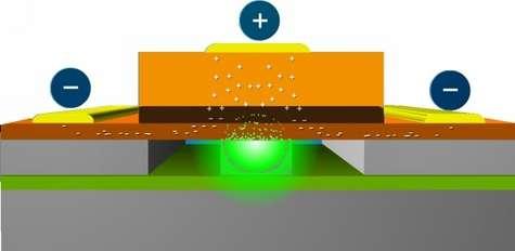 Mesurant moins de dix micromètres, le composant en phosphide d'indium (orange) est gravé sur une puce en silicium à l'aide des techniques habituelles. Sous l'action d'une tension électrique, il émet une lumière laser (en vert) récupérée par un guide d'onde en silicium dont les parois jouent le rôle de miroir. Crédits : Intel