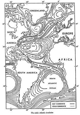 Figure 6 : Circulation générale océanique de surface dans l'Atlantique : Autour de l'anticyclone des Açores : le Gulf Stream, le Courant des Canaries et le Courant Equatorial Nord. Associés à la dépression d'Islande la dérive nord atlantique et le courant du Labrador. - Cliquez pour agrandir la photo
