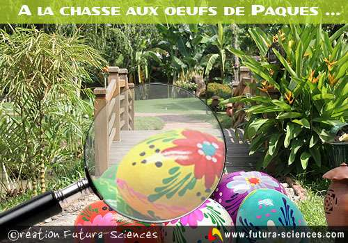 Chasse aux oeufs...